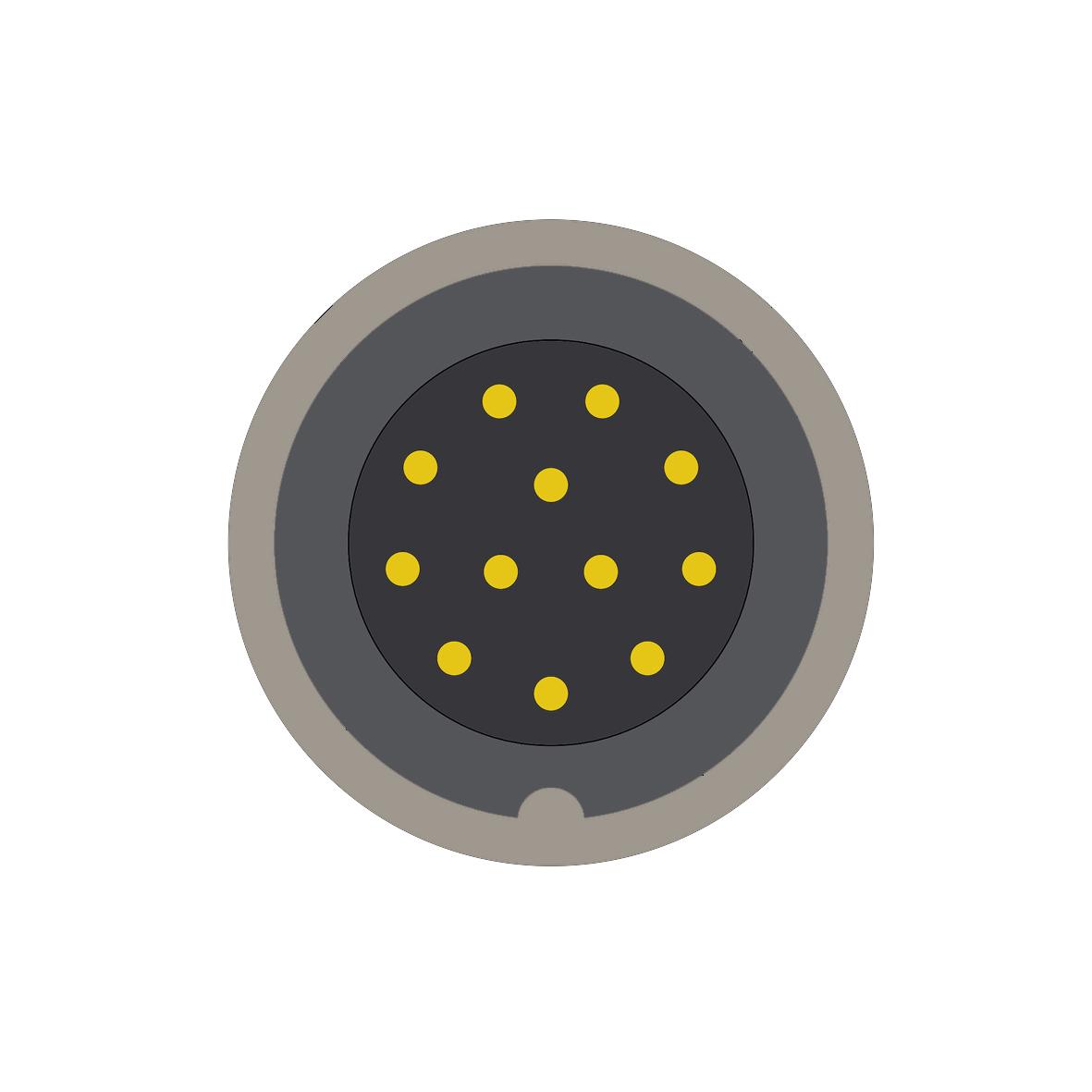 212AF (0) 12 way connector