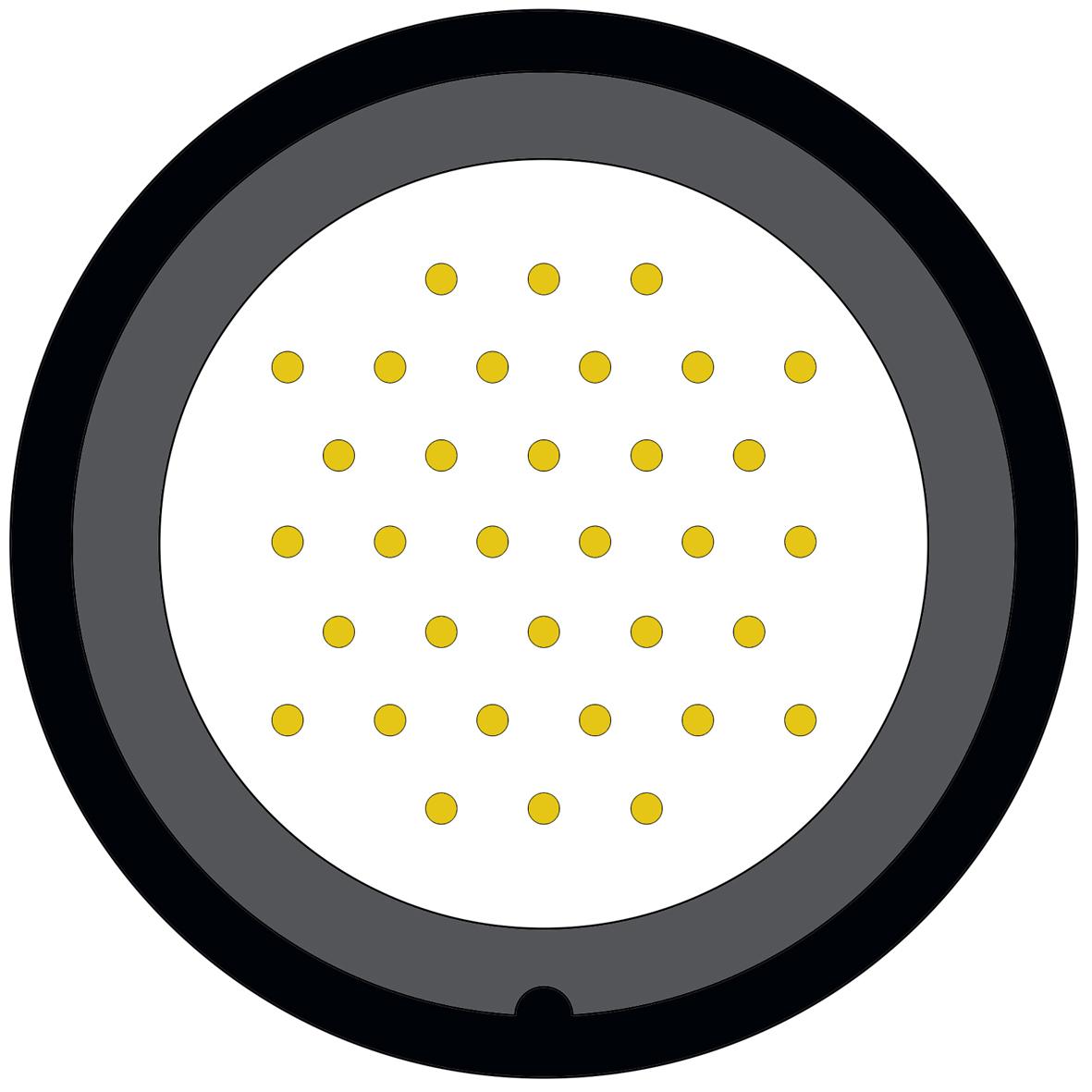 434CD (2) 34 way connector